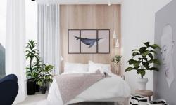 Những loại cây nào có thể đặt trong phòng ngủ và LƯU Ý PHẢI BIẾT