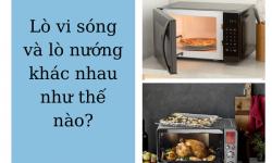 Lò vi sóng và lò nướng khác nhau như thế nào?